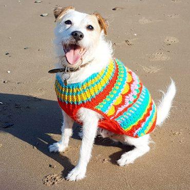Christmas crochet pattern dog sweater jumper