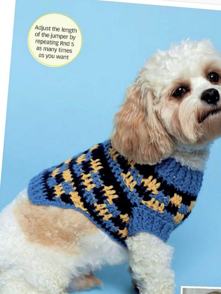 Dog Jumper sweater free crochet pattern